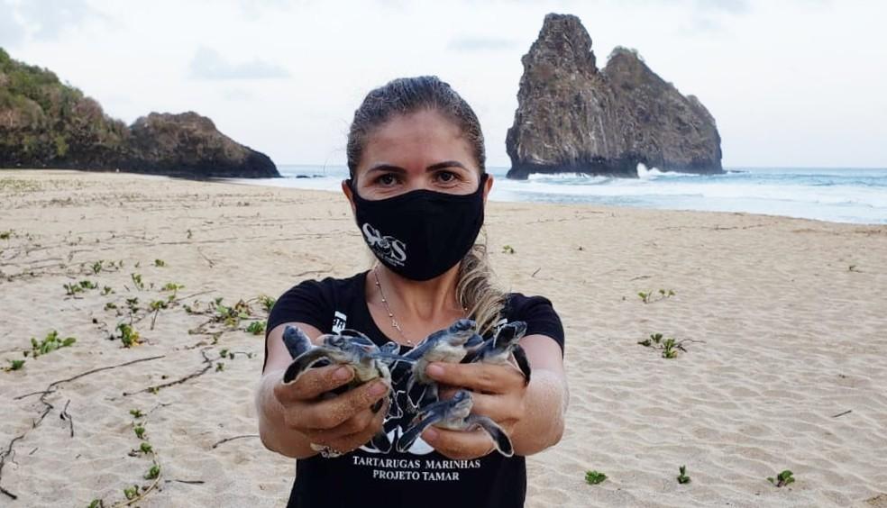 A bióloga Rafaely Ventura contabilizou as tartarugas de um ninho na Cacimba do Padre — Foto: Ana Clara Marinho/TV Globo