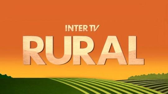 Foto: (Inter TV)