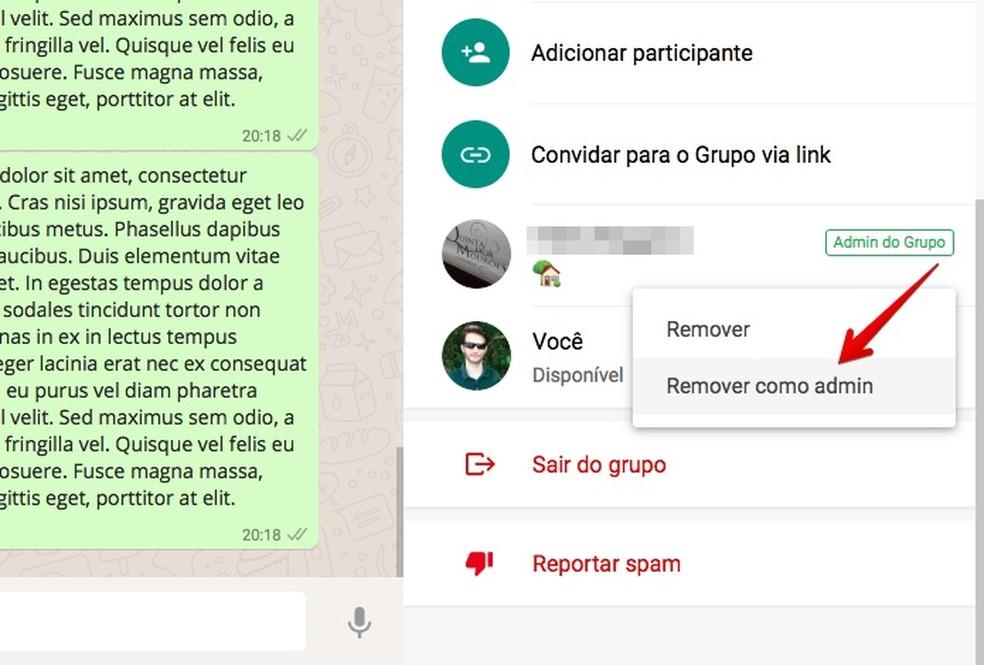 Remova um administrador no WhatsApp Web (Foto: Reprodução/Helito Bijora)