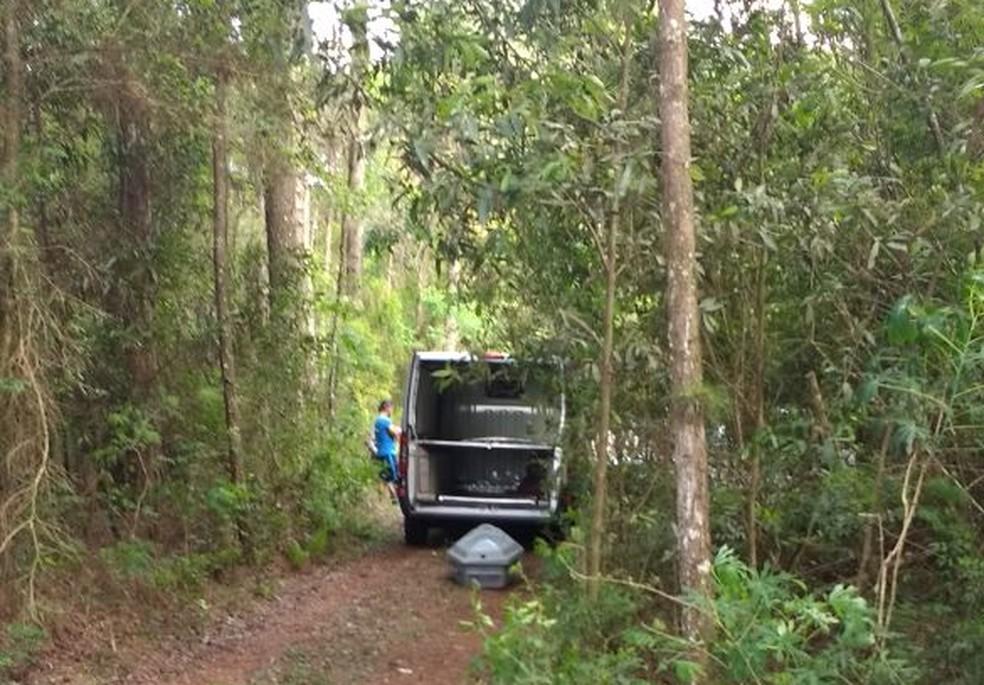 Local foi apontado à Polícia por moradores do entorno de fazenda no interior de Vitor Graeff, que andavam pela região para buscar lenha (Foto: Polícia Civil/Divulgação )