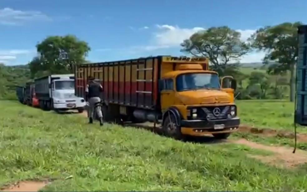 Cinco caminhões seriam usados para transportar gado roubado em fazenda de Arenópolis — Foto: Reprodução|TV Anhanguera