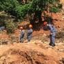 Foto: (Equipes buscam por desaparecidos no Morro do Macaco Molhado em Guarujá, SP / Solange Freitas/G1)