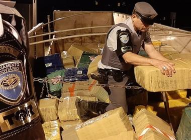 maconha_apreensao_policia_pm (Foto: SSP/Divulgação)