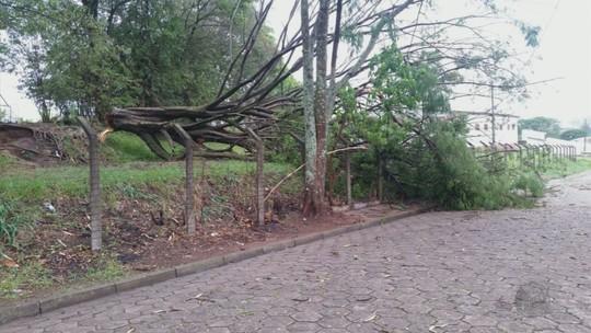 Chuva forte atinge mais de 10 cidades do Sul de MG e deixa estragos