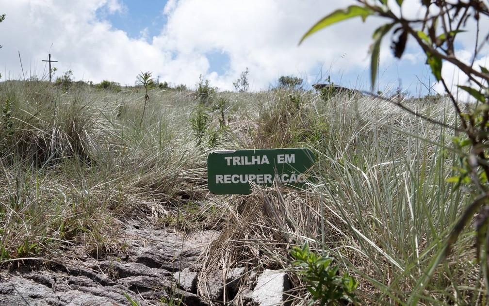 Parque Estadual do Ibitipoca - Trilha em recuperação — Foto: Dimas Stephan/G1