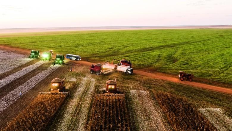 Colheitadeiras avançam sobre campo e enchem caminhão (Foto: Getty Images)