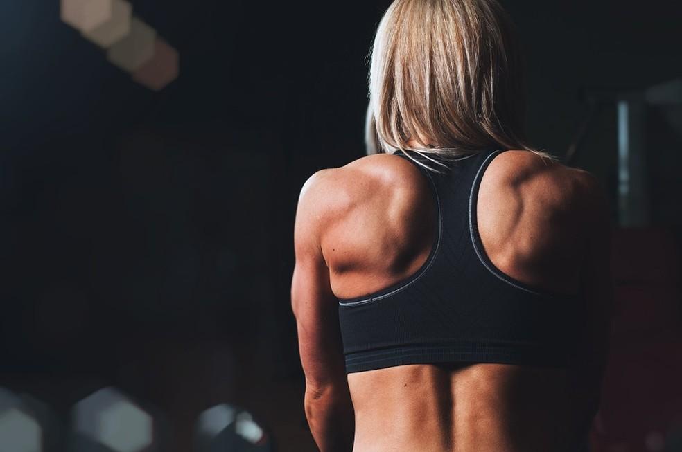 Pesquisa analisou efeitos de exercício de força na redução da gordura no fígado - próximos passos devem envolver testes com humanos — Foto: Pixabay/Divulgação