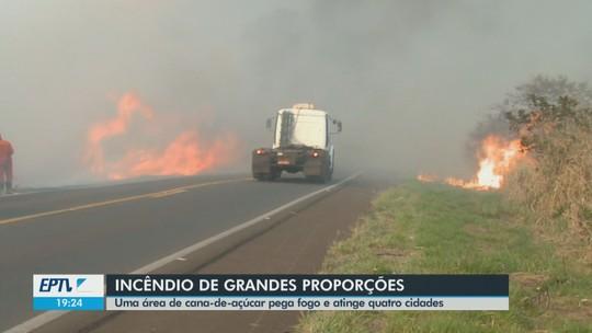 Incêndio atinge canavial e fumaça prejudica visibilidade de rodovia e qualidade do ar em Nova Europa