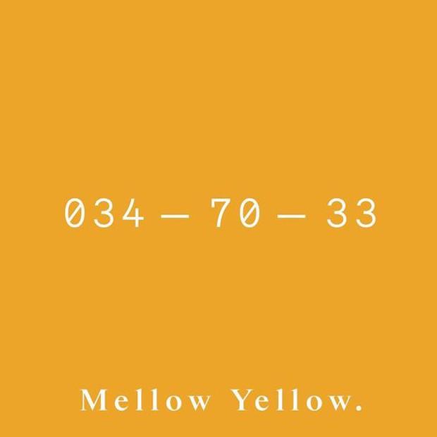 Tendência de cores: as 5 tonalidades que vão tomar conta de 2020 (Foto: Divulgação)