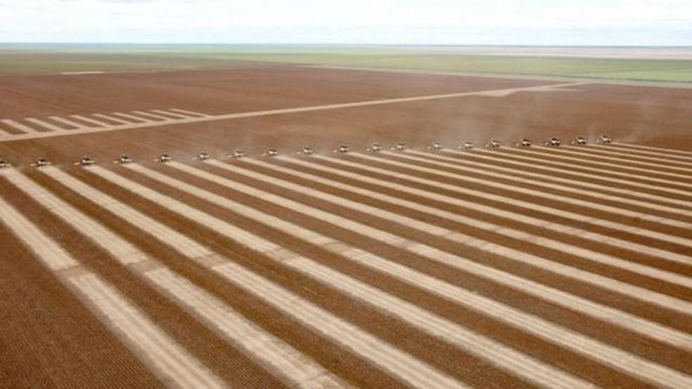 Colheita de soja, em foto de arquivo; segundo Carlos Nobre, força agrícola brasileira é ameaçada pelas mudanças climáticas e pelo desmatamento — Foto: Reuters via BBC