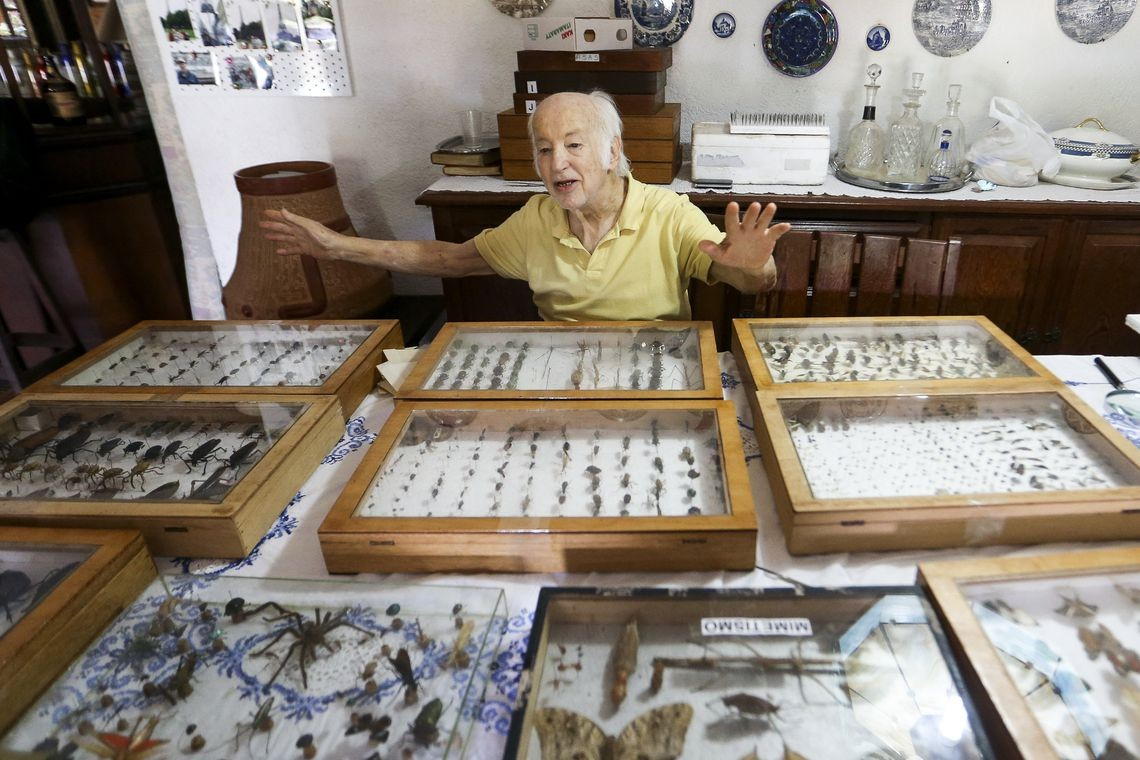 colecionador insetos (Foto: Marcelo Camargo/Agência Brasil)