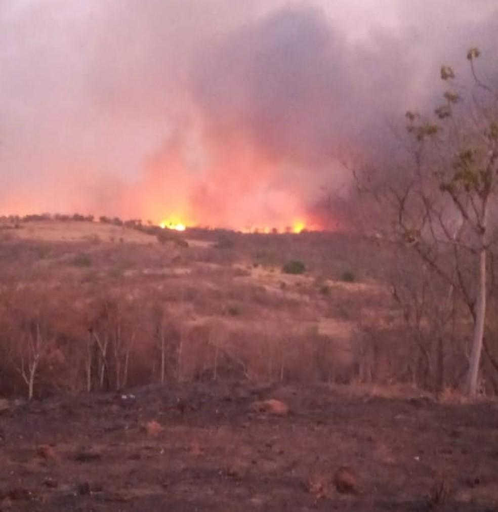Bombeiros tentam controlar as chamas — Foto: Divulgação