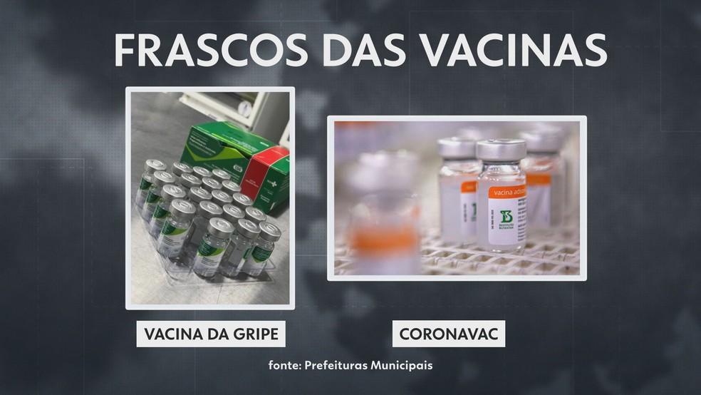 Frascos da vacina contra a gripe e da CoronaVac, vacina produzida pelo Butantan contra a Covid — Foto: Reprodução/TV Globo