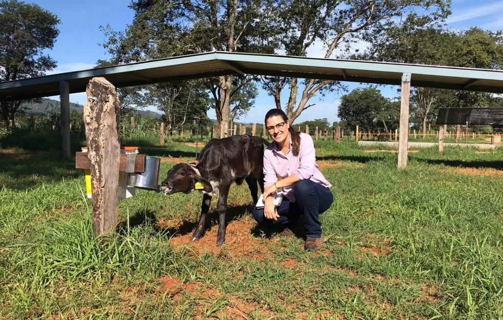 Dra. Lívia é pós-doutora na área de produção, comportamento e bem-estar de bovinos leiteiros. — Foto: Arquivo Pessoal