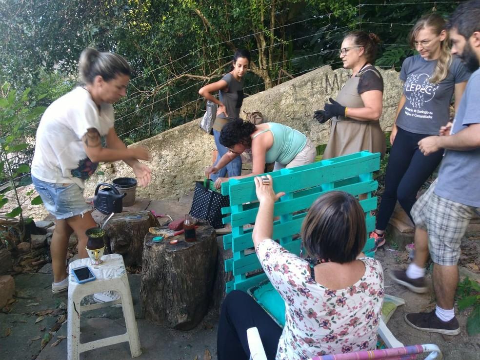 Moradores transformaram um terreno abandonado em horta comunitária no Centro de Porto Alegre — Foto: Rose Rolim/arquivo pessoal