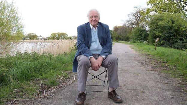O britânico Sir David Attenborough, de 92 anos – expectativa de vida tende a ser maior em lugares mais desenvolvidos (Foto: Getty Images)