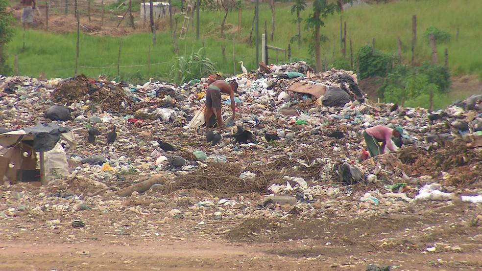 Das 184 cidades de Pernambuco, 104 ainda utilizam lixões, segundo o TCE — Foto: Reprodução/TV Globo