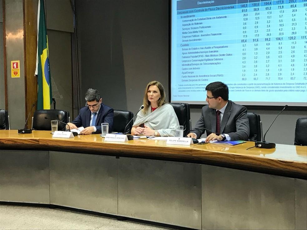 A secretária do Tesouro Nacional, Ana Paula Vescovi, durante o anúncio do resultado das contas do governo de novembro (Foto: Laís Lis / G1)