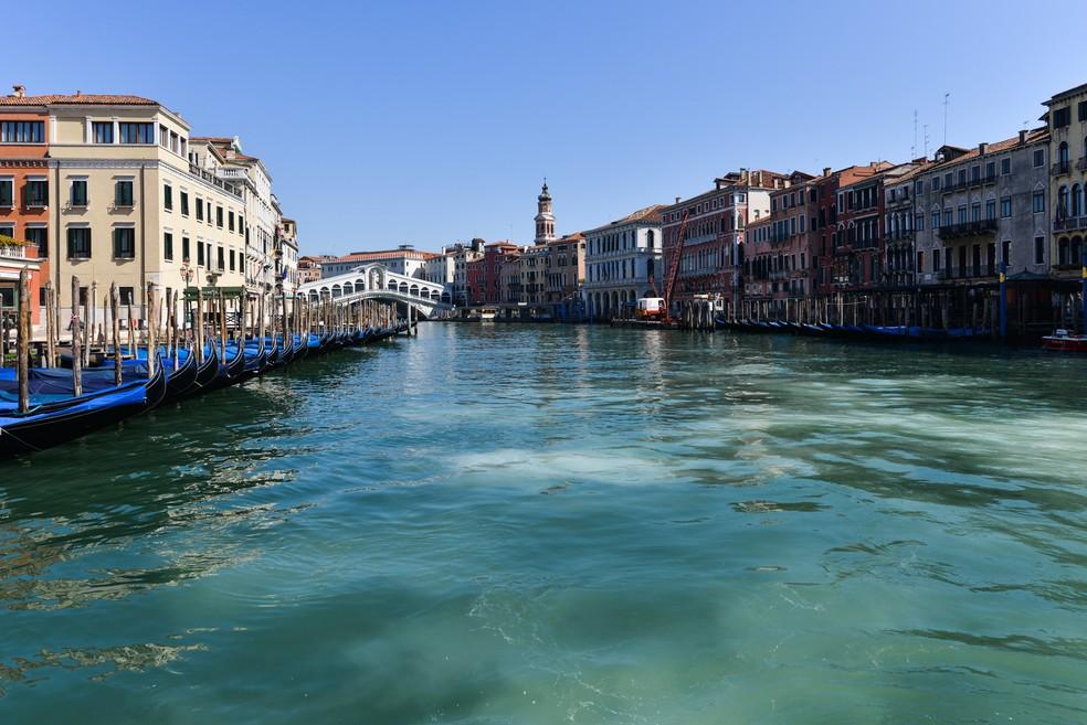 O Grande Canal perto da Ponte Rialto, em Veneza, é visto com águas claras como resultado da interrupção do tráfego de lanchas após o bloqueio do país durante a nova crise de coronavírus — Foto: Andrea Pattaro/AFP