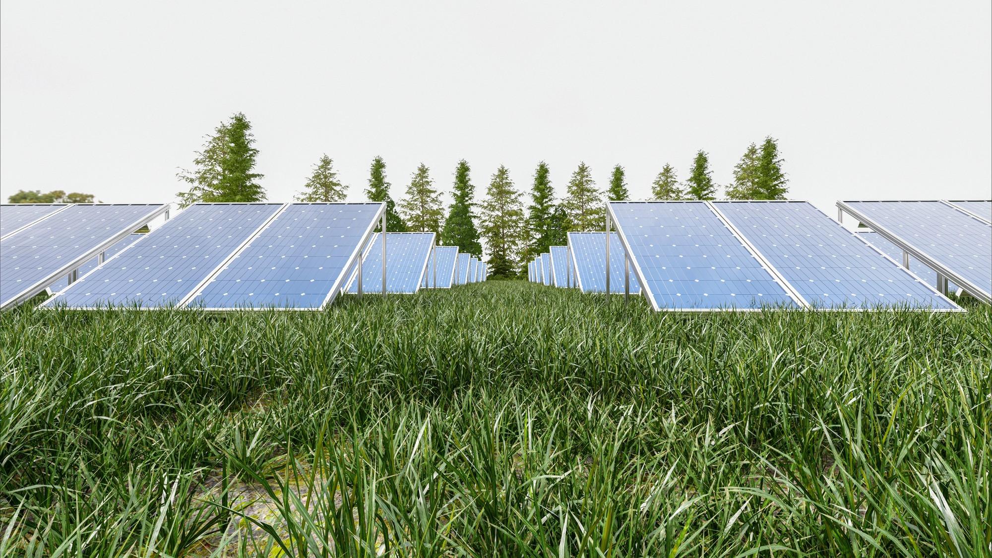 Conheça os principais mitos e verdades sobre a energia solar no Brasil