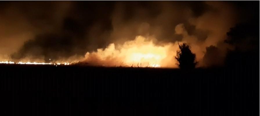 Incêndio atinge área de arrozal em Cachoeira do Arari, no Marajó