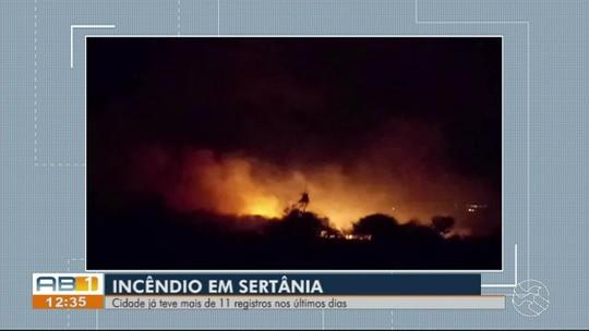 Sertânia registra 11 casos de incêndio na vegetação em menos de 15 dias