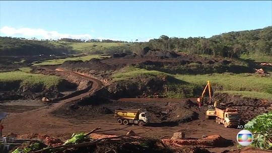 Multas do Ibama por danos ambientais de grandes tragédias não foram pagas
