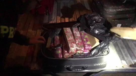 PRF apreende 25 kg de maconha com passageiro de ônibus na BR- 101, em São Sebastião