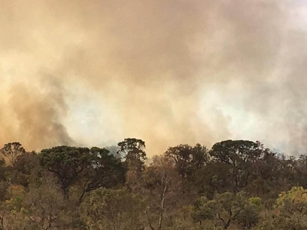 Incêndio florestal atingiu o Parque Burle Marx, na região do Noroeste, no Distrito Federal — Foto: Flávia Alvarenga/ TV Globo