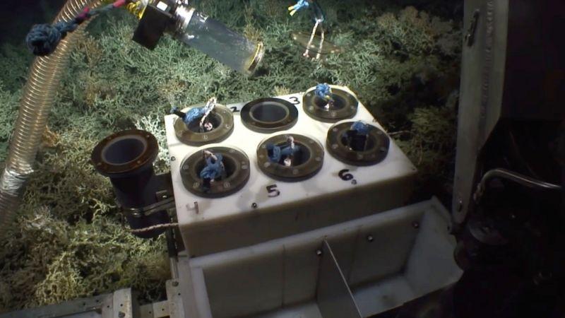 El equipo de robótica submarina ha permitido la exploración a profundidades que aplastarían a los buceadores humanos (Foto: Atlas vía BBC News)