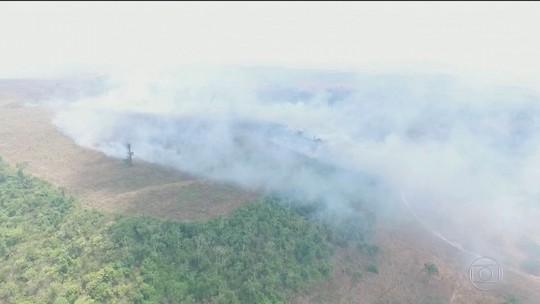 Desmatamento nas áreas protegidas da Amazônia avança