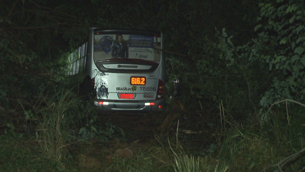 Ônibus que foi parar no matagal após motorista ser baleado na nuca — Foto: Reprodução/TV Globo