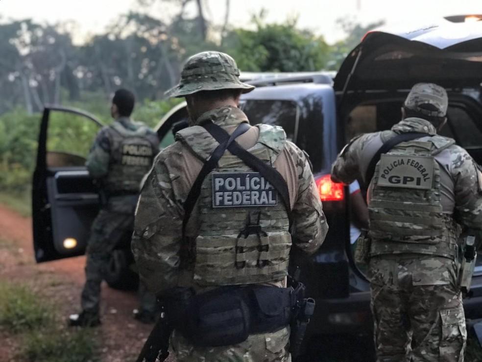 Operação Ybyrá — Foto: Polícia Federal de Mato Grosso/Assessoria