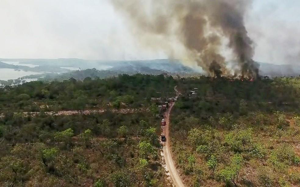 Mata de Alter do Chão, no Pará, atingida por fogo entre este sábado e esta segunda-feira (16) — Foto: Reprodução/GloboNews