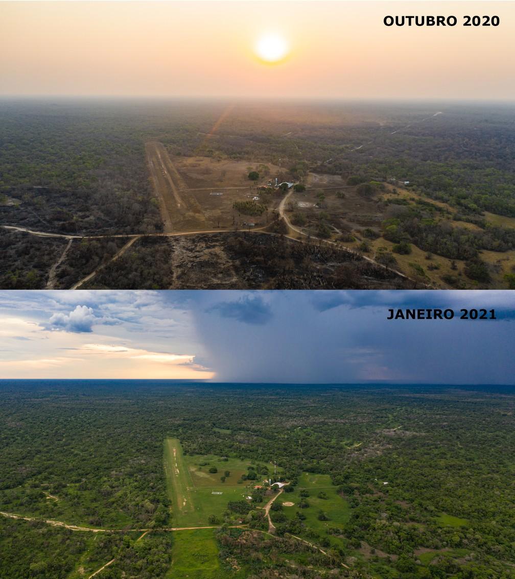 Antes e depois das queimadas em reserva no Pantanal de MT — Foto: Jeferson Prado/Sesc Pantanal