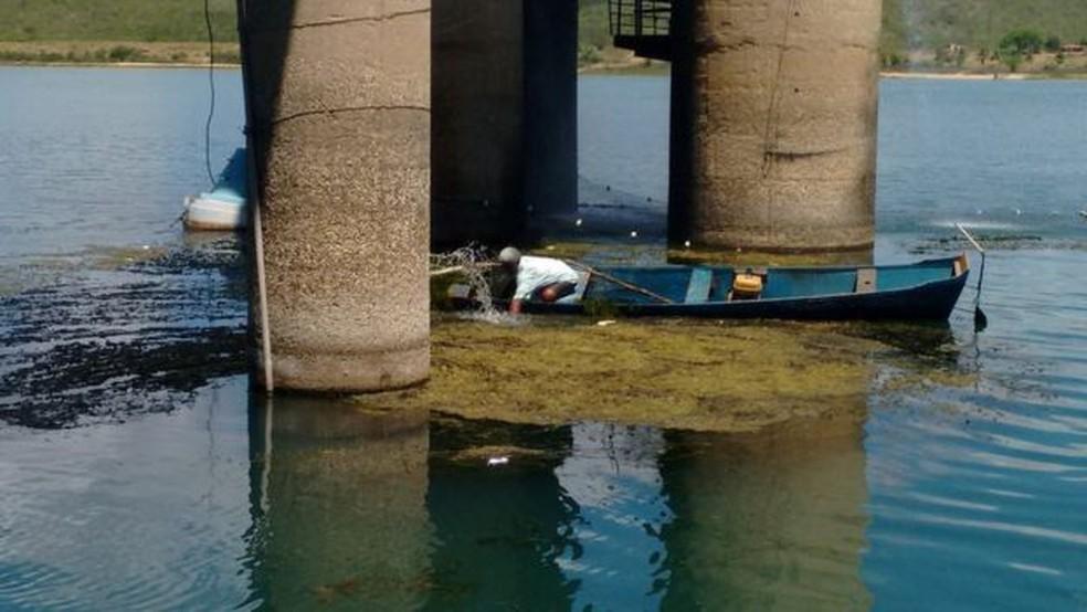 Pescadores da região foram chamados para retirar plantas do rio — Foto: Companhia de Saneamento de Alagoas/BBC