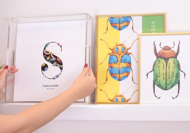 Coleção insetos da Paperview (Foto: Divulgação)