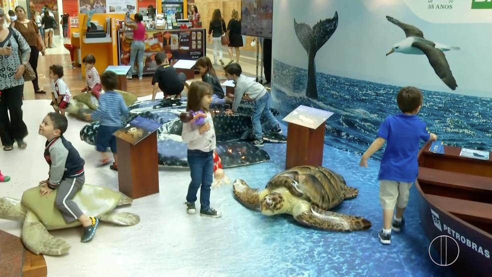 Visitação é aberta ao público e exposição conta com atividades interativas (Foto: Cadu Alves/Inter TV)