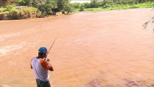 Poluição causada pela tragédia em Brumadinho ainda afeta ribeirinhos