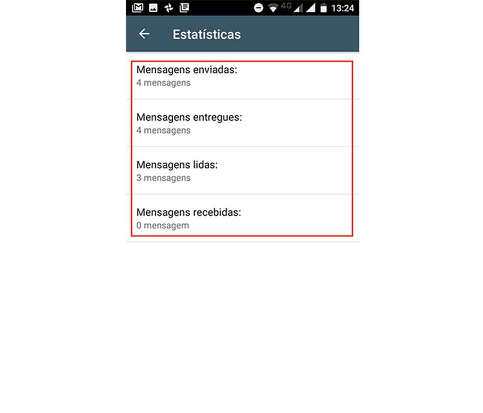 Estatísticas de mensagens enviadas, recebidas, lidas e entregues no WhatsApp Business (Foto: Reprodução/Marvin Costa)