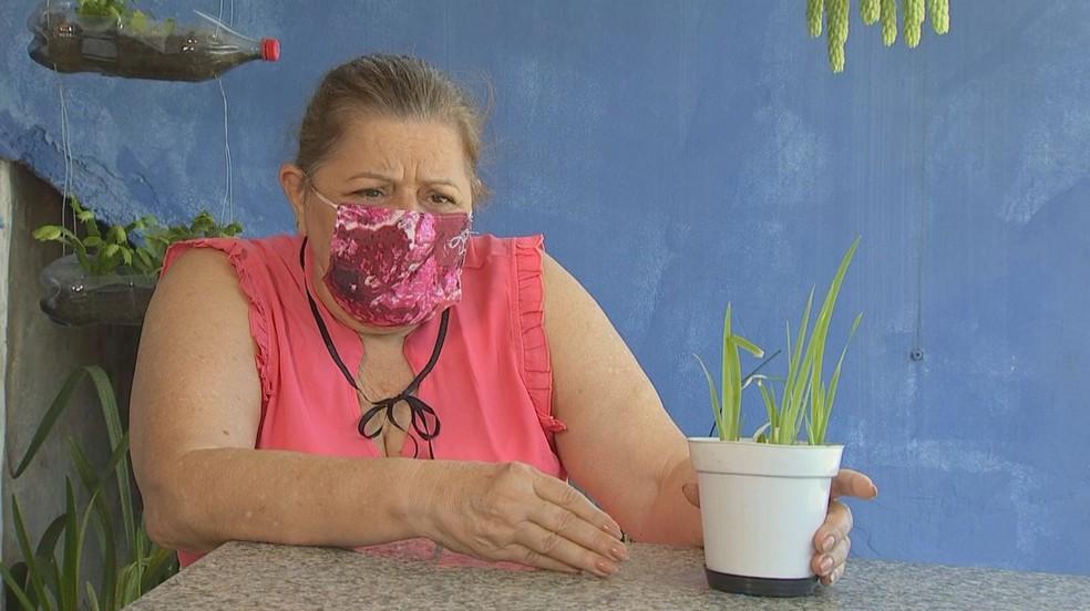 Mariza Silveira contou que gato comeu folha de planta de semente misteriosa e morreu — Foto: Reprodução/TV TEM