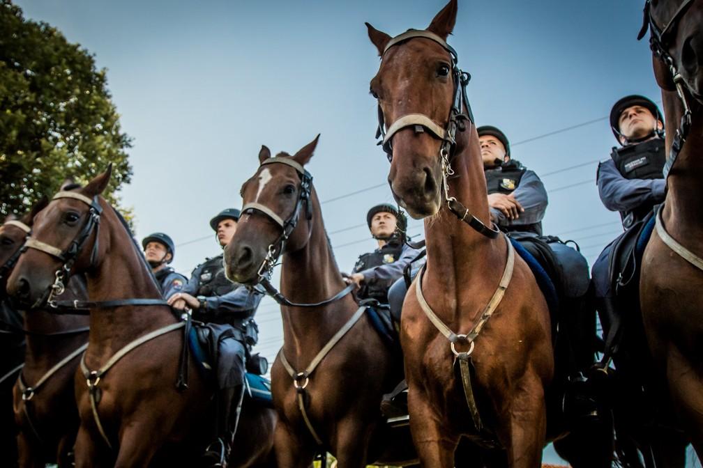 Inauguração do Centro de Equoterapia do Regimento de Policiamento Montado (RPMon) — Foto: Christiano Antonucci