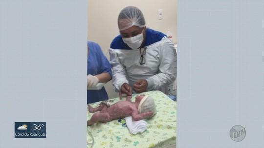 Professora dá à luz netos gêmeos após inseminação para realizar sonho do filho gay de ser pai