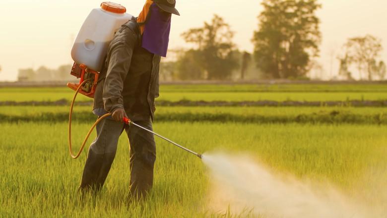aplicacao-glifosato-agrotoxico-herbicida (Foto: Thinkstock)
