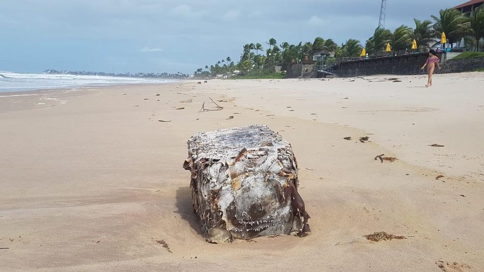 Fardo apareceu na Praia do Cupe, em Ipojuca, em junho deste ano — Foto: Clemente Junior