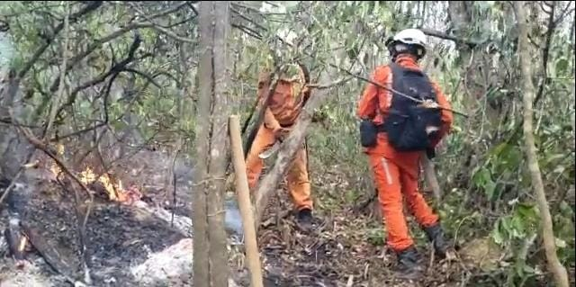 Fogo em vegetação em Lençóis é controlado após cinco dias; confira situação de combate às chamas em outras regiões