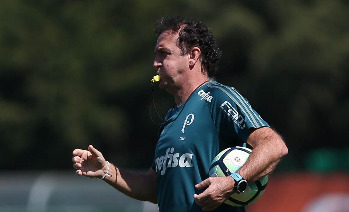 4094b3eb86 Como a folga no Brasileirão pode melhorar o desempenho do Palmeiras contra  o Galo