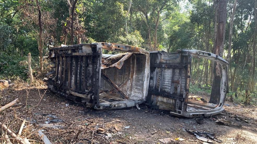 Van com 70 gatos que foi roubada é encontrada incendiada em matagal na zona leste de SP. — Foto: Divulgação/Polícia Civil