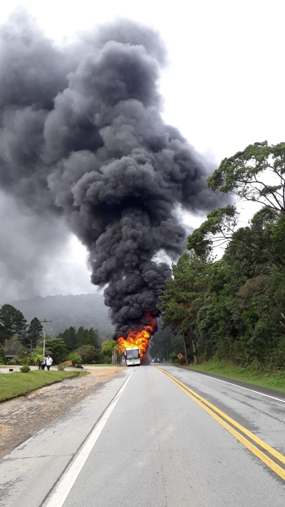 Incêndio ocorreu na manhã desta quinta-feira na BR-282 — Foto: PRF/ Divulgação