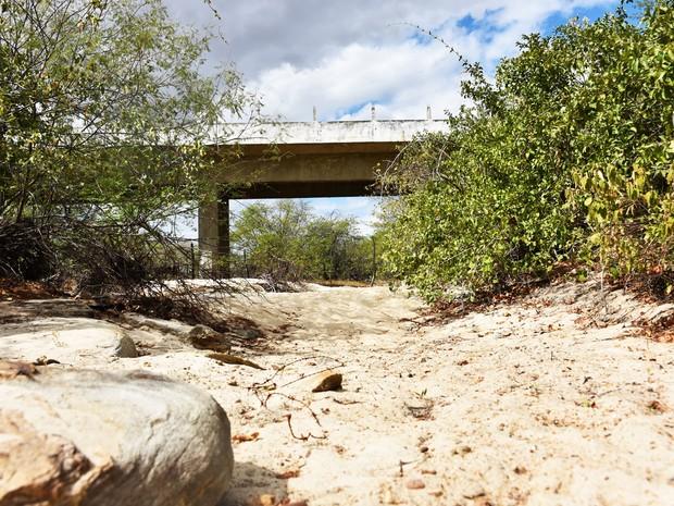 Na região Oeste potiguar, a 'seca verde' apresenta contrastes. De um lado, a robusta e exuberante vegetação da caatinga; do outro, a terra árida e cinzenta em meio ao leito seco dos rios  (Foto: Anderson Barbosa e Fred Carvalho/G1)